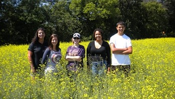 Anoka-Ramsey Community College summer research team