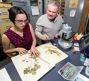 people in herbarium