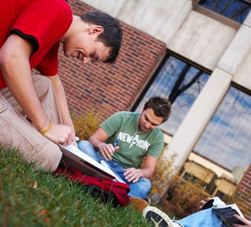 students studying outside in grass